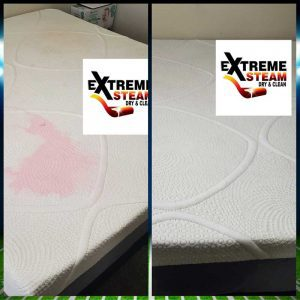 Extreme-Steam-Dry-and-Clean-Gallery6